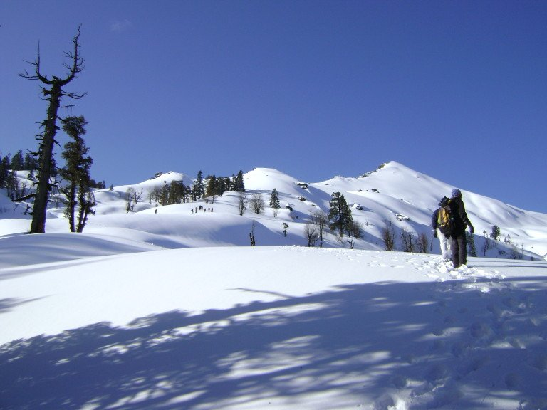 Loads of snow in Winters