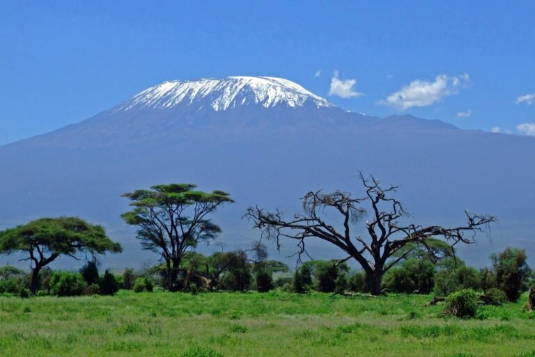 Best Kilimanjaro Tours| Roads and Journeys